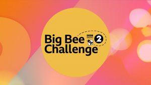 Big Bee Challenge